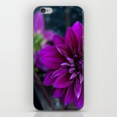 glitters iPhone & iPod Skin