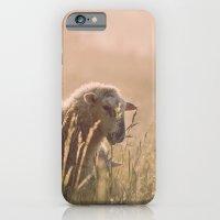 iPhone & iPod Case featuring sunrise by Crimson Chickadee