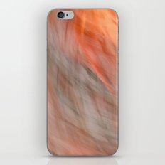 Sunset Time iPhone & iPod Skin