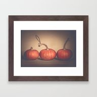 Three Pumpkins  Framed Art Print