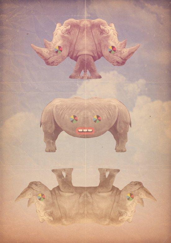 rino&ceronti Canvas Print