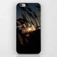 Sunset in the Fall iPhone & iPod Skin