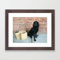 Puppy LOUBe Framed Art Print
