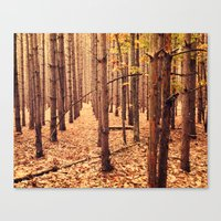 A Cathedral of Trees Canvas Print