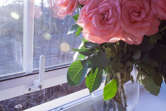 Flowers in the Window Canvas Print