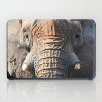 African Elephant 1 iPad Case