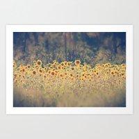 Field Of Sunflowers Art Print