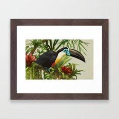 Channel- Billed Toucan V… Framed Art Print