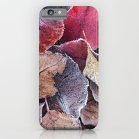 Frosty Ground Cover iPhone 6 Slim Case