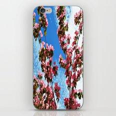 Sky/Flowers iPhone & iPod Skin