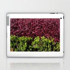 colorful leaves Laptop & iPad Skin