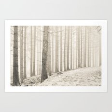 pale winter forest I Art Print