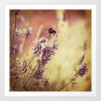 {flight Of The Bumblebee… Art Print