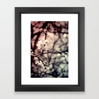 Tree Blossom Framed Art Print