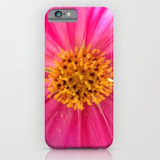 Pink Cosmos iPhone 6 Slim Case