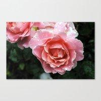 Dewdrop Roses Canvas Print