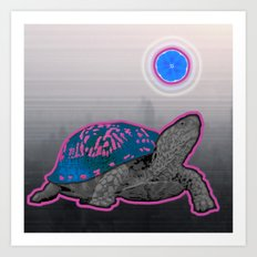California Pleasure Turtle Art Print