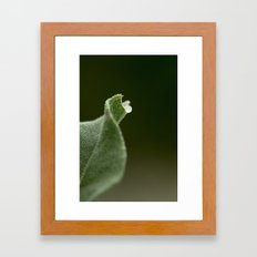 Sinuous Framed Art Print