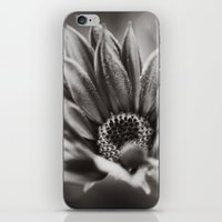 Flower In Black And Whit… iPhone & iPod Skin