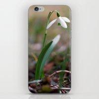 Snowdrop -  Spring Flowe… iPhone & iPod Skin