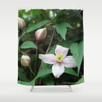summer pink flower on vine. backyard floral photography. Shower Curtain
