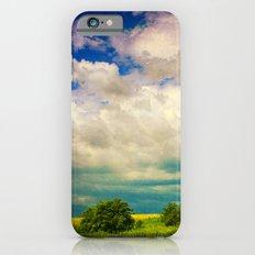 In a Landscape iPhone 6 Slim Case