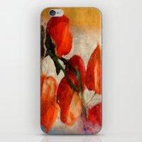 Physalis iPhone & iPod Skin