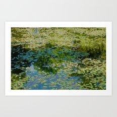 Pond Impression Art Print