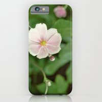 iPhone & iPod Case featuring Flower by TomP