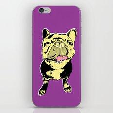 Taco the French Bulldog iPhone & iPod Skin