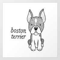 Dog Breeds: Boston Terrier Art Print