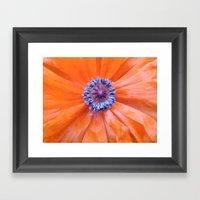 Poppy 2 Framed Art Print