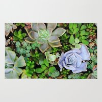 Collection of Succulents Rug