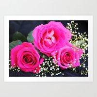 Pink Roses On Black I Art Print
