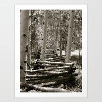 Fencing the Trees B/W Art Print
