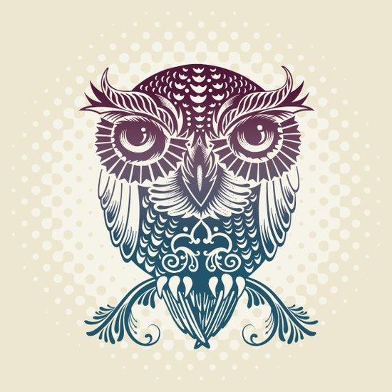 Baby Egyptian Owl Canvas Print