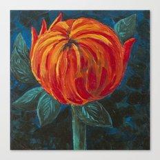 Chrysanthemum Bud Canvas Print