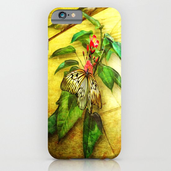 Happy Summer iPhone & iPod Case