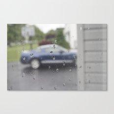 Mustang in Rain Canvas Print
