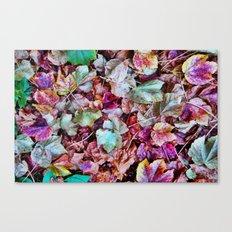 Autum Leaves Canvas Print