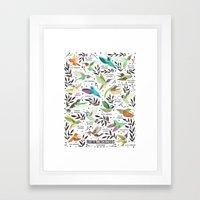 Hummingbirds of North America Field Guide  Framed Art Print