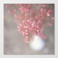 pink coral bells Canvas Print
