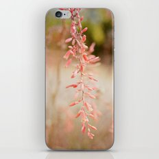 After a storm comes a calm iPhone & iPod Skin