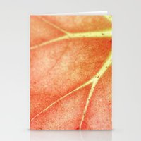 Begonia  Stationery Cards