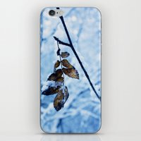 A Little Colour Remains iPhone & iPod Skin