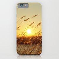Island Sunset iPhone 6 Slim Case