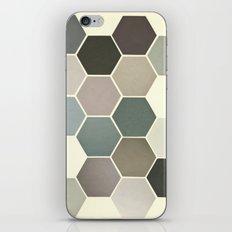 Shades of Grey iPhone & iPod Skin