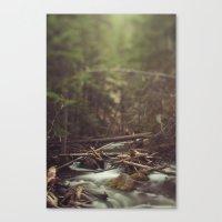Cold Spring Creek Canvas Print
