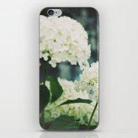 snowball iPhone & iPod Skin