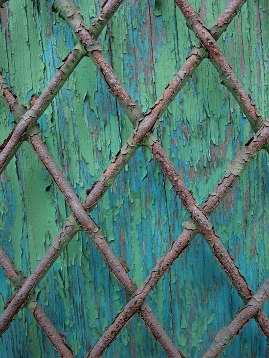 Rusty Fence Art Print